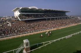 Queen Mother Champion Chase streaming live