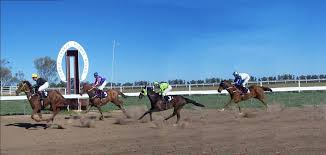 Coonamble streaming live