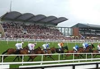 Fairyhouse streaming live