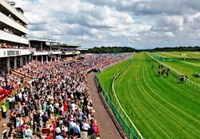 Haydock Park streaming live
