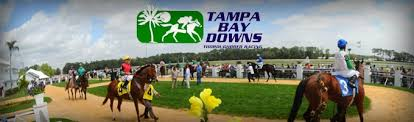 Tampa Bay Downs streaming live