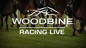 Woodbine streaming live